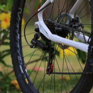 Fotografia da roda traseira de bicicleta de mountain bike Two Dogs
